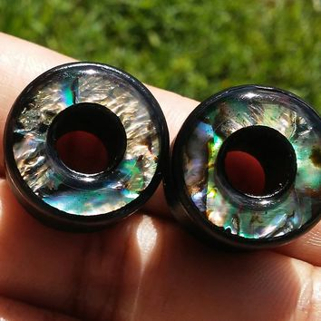 Abalone Double flare Ear Plugs, Gauges, 10mm, 12mm, 14mm, 16mm, 18mm, 20mm, 22mm, 25mm