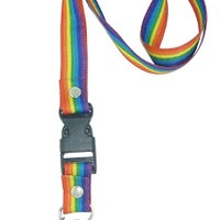 Rainbow Stripe Bolt Snap Lanyard