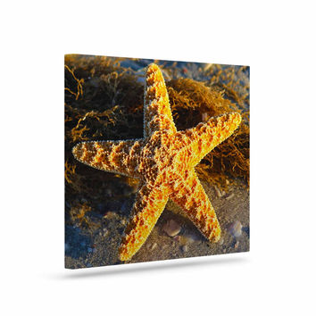"Philip Brown ""Starfish"" Coral Gold Canvas Art"