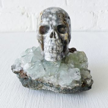 Ocean Space Jasper Skull Crystal- on India Crystal Geode