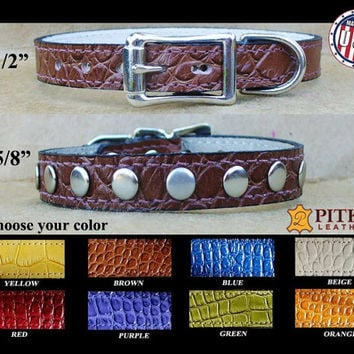 Designer Pet Collars -  Designer Cat Collars - Leather puppy collars -  Croco Leather Collars with silver rivets - Pretty Dog Collars