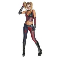 Adult Batman Arkham City Secret Wishes Harley Quinn Costume