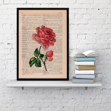 Vintage Book Print Dictionary or Encyclopedia Page Print- Book print Rose on Vintage Book art BPBB045