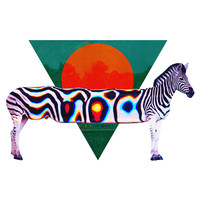 Ali Gulec's Rainbow Zebra Wall Decal