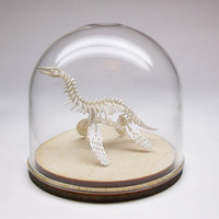 59mm Glass display dome with wood base