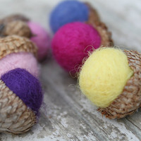 6 Wool Acorns in Pastel Colors by Stitchcrafts on Etsy