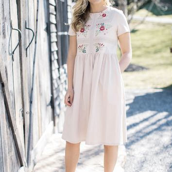 Haven Embroidered Dress, Taupe