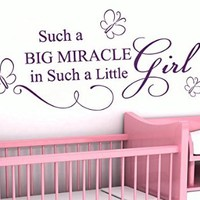 Wall Decals Quote Such A Big Miracle Butterfly Decal Vinyl Sticker Girl Nursery Baby Room Home Decor Art Murals Ms704