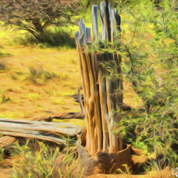 Saguaro Ribs Desert Landscape Fine Art Photography Painting Arizona Painting Print