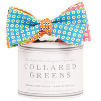 The Four Panel Henry Bow in Green/Pink/Blue/Orange by Collared Greens
