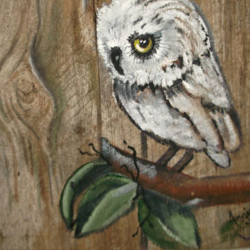 "Owl Painting ""Weird Al"" - on 14x10 barn wood"