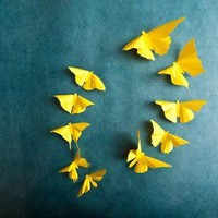 3D Wall Butterflies 20 Lemon Yellow Butterfly by hipandclavicle