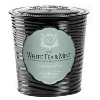 Aquiesse Portfolio Collection White Tea Mint Scented Soy Candle (11 oz)