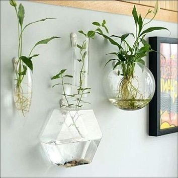 1pcs handmade wall decor clear terrarium vase 🌱