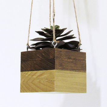 Large Wood Hanging Succulent Planter, Modern Gold Cube Plant Holder, Indoor Planter Box, Cactus Planter, Office Planter, Rustic Planter
