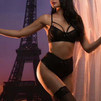 Parisian Romance Bra Set, Black Lace and Mesh Bra, Black Bra with Lace and Mesh - Yandy.com, Lace and Mesh High Waisted Panty, Black High Waisted Panty - Yandy.com