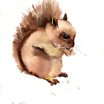 Squirrel, Original watercolor painting, 12 X 9 in, babe squirel, children wall art,