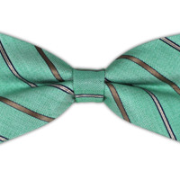 Cliffside Stripe - Spearmint (Linen Bow Ties)