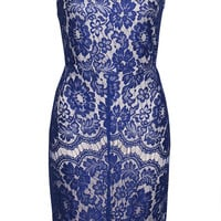 Desire Blue Lace Dress