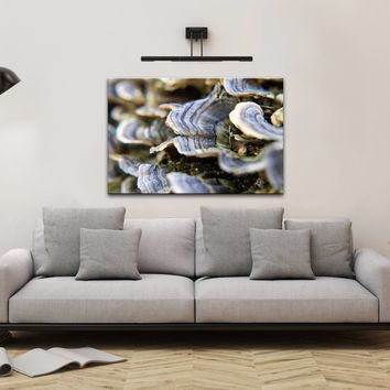 Botanical Nature Photograph Mushrooms on Log - Fine Art Canvas - Home Decor Unframed Wall Art Prints
