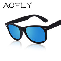 Classic Black Polarized Traveler Sunglasses