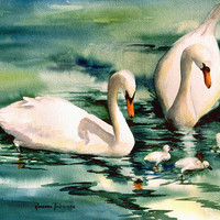 Swans with Cygnets 11 x 14 watercolor print ecofriendly watgercolorsNmore
