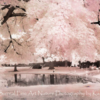 "Pink Nature Photography, Dreamy Pink Nature Photos, Pink Ethereal Nature, Fantasy Surreal Trees, Pink Flamingo Pond, Fine Art Photo 8"" x 12"""