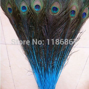 50pcs/lot Blue Lake natural big eyes peacock feather 32-35 inch / 80-90 cm peacock feathers centerpieces wedding