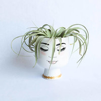Free shipping Ceramic Planter lady head vase.  Air plant included
