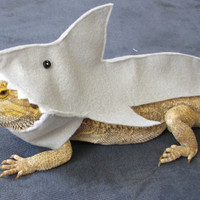 Shown on Discovery's Shark Week!!! Handmade Felt Bearded Dragon Great White Shark Costume with FREE Bow!