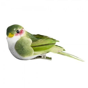 Green Bird Clip