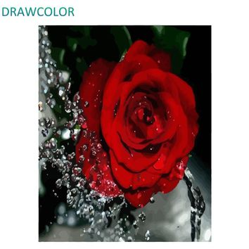 DRAWCOLOR Frame Red Rose DIY Painting By Numbers Flower Acrylic Paint On Canvas Modern Wall Art Painting Calligraphy 40x50cm Art