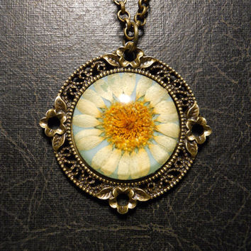 Blue with White Flower Preserved Daisy Specimen Necklace