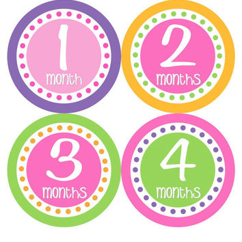 Baby Month Stickers Monthly Onesuit Stickers Girl Hot Pink Purple Green Stickers Monthly Onesuit Sticker Baby Shower Gift Photo Prop -Dorine