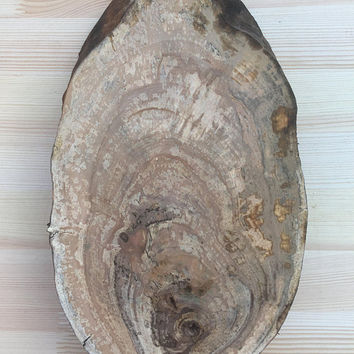 Oval Wood board, Apple Wood Slab, Rustic Cake Stand,Large Wood Slice,Rustic Wood Centerpiece, Wooden Cupcake Plate, Wood Rustic Decor