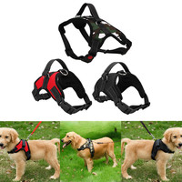 Adjustable 3 Colors Dog Harness
