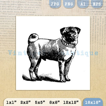 Pug Dog Digital Image Download Collage Sheet Illustration Printable Graphic 18x18 HQ 300dpi No.3722