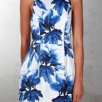 Keepsake - Counter Attack Dress Wedgwood Floral - Dresses - Shop by Product - Womens
