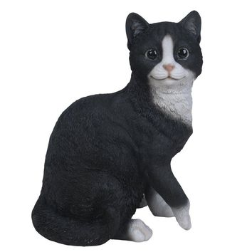 Realistic Bicolor Black and White Cat Kitten Collectible Figurine Amazing Detailed Glass Eyes Hand Painted Resin Life Size 10 inch Figurine Perfect for Cat Lover Collectible