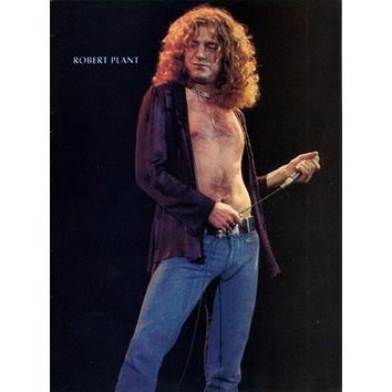 Robert Plant poster Metal Sign Wall Art 8in x 12in