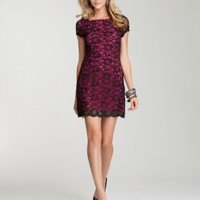 bebe Color Lace Dress Day Dresses Black/pink-s