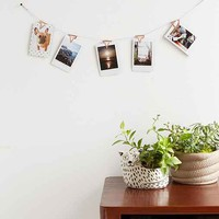 Copper Photo Clips Banner