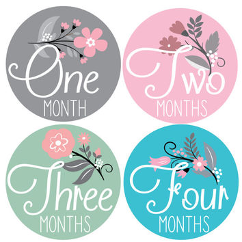 Baby Monthly Milestone Stickers- 12 Stickers, Floral Monthly Baby Stickers, Milestone Stickers, Monthly Baby Stickers, Baby Monthly Stickers