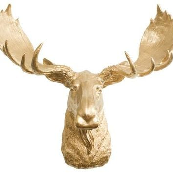 The Alberta | Moose Head | Faux Taxidermy | Gold Resin
