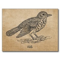 Burlap Vintage Hello Little bird from Zazzle.com