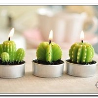 6 Pcs/lot Mini Cactus Scented Candles for Home Decoration