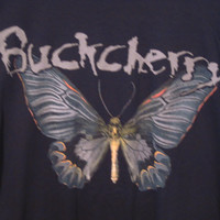 Buckcherry T-Shirt,  Size 2XL. American Rock Band