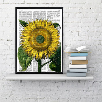Vintage Book Print Dictionary or Encyclopedia Page Print- Book print Sunflower  Botanical studio print on Vintage Dictionary Book art