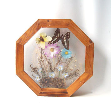 vintage real butterfly picture wall hanging shadow box butterflies glass flowers nature woodland decorative home decor retro modern octagon