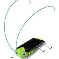 OWI - Frightened Grasshopper Kit - Solar Powered - OWI-MSK670